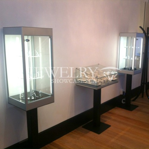 Museum Display Cases Small 421